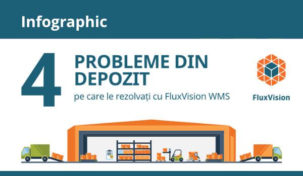 Infographic - 4 probleme din depozit care se rezolvă cu FluxVision WMS