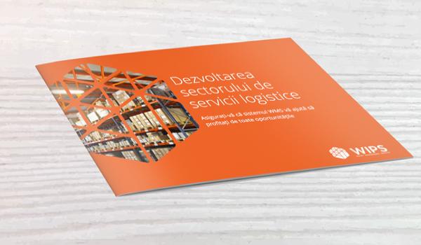 eBook Dezvoltarea sectorului de servicii logistice